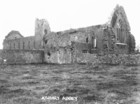 Athenry Abbey 2_thumb.jpeg