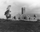Ross Errilly Friary 4_thumb.jpeg