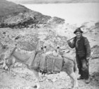 Aran man with donkey and panniers_thumb.jpeg