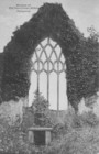 Window of the Old Dominican Abbey at Portumna_thumb.jpeg