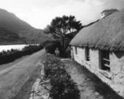 Thatched cottage near Leenane_thumb.jpeg