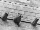 Gargoyle at Collegiate Church of Saint Nicholas_thumb.jpeg
