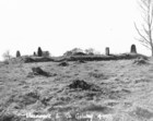 Stone Circle at Moanmore East_thumb.jpeg