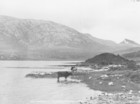 Lough Derryclare and Bencorrbeg_thumb.jpeg