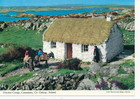 Thatched cottage in Connemara_thumb.jpeg